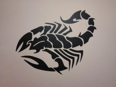 Lucrari, proiecte Stickere, folii decorative - poze primite de la clienti Beestick - Poza 327