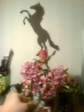 Lucrari, proiecte Stickere, folii decorative - poze primite de la clienti Beestick - Poza 407