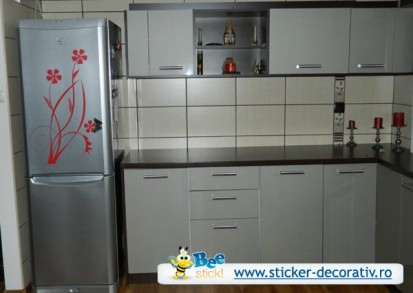 Stickere, folii decorative - poze primite de la clienti / 555025_564398973578285_1223833450_n