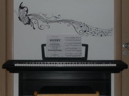 Lucrari, proiecte Stickere, folii decorative - poze primite de la clienti Beestick - Poza 461