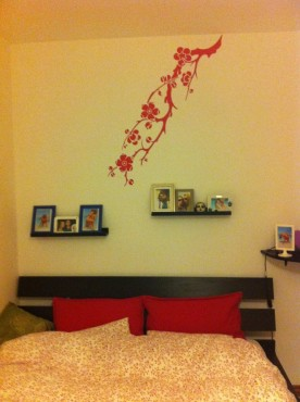 Lucrari, proiecte Stickere, folii decorative - poze primite de la clienti Beestick - Poza 478