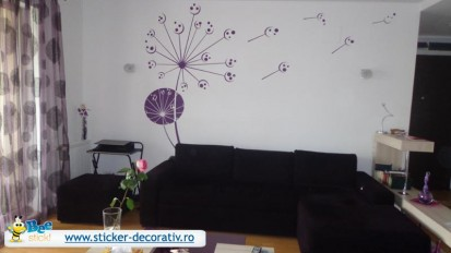 Stickere, folii decorative - poze primite de la clienti / 574490_557061074312075_536833095_n