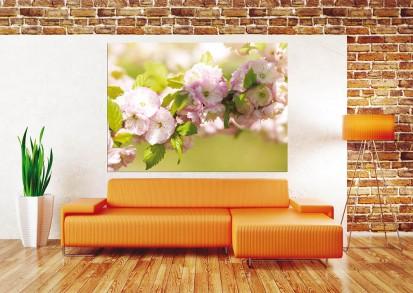 Fototapet camere de copii - Format Mic (160x115) / Fototapet Plum