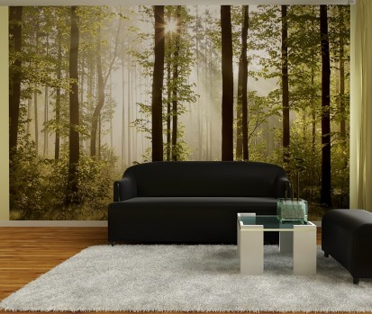 Fototapet decorativ Giant (360x254cm) / Fototapet Morning Forest