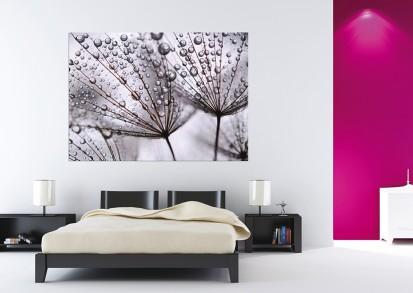Fototapet decorativ Maxiposter (160x115 cm) / Fototapet Dupa Ploaie