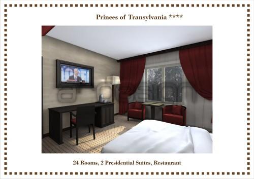 Hotel Printii Transilvaniei, Baia Mare  - Poza 3