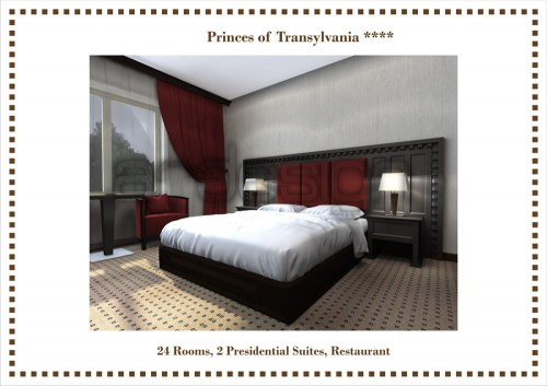 Hotel Printii Transilvaniei, Baia Mare  - Poza 4