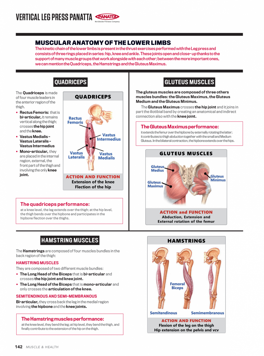 Pagina 3 - Aparat de fitness PANATTA VERTICAL LEG PRESS Fisa tehnica quadriceps.  Positioning and...