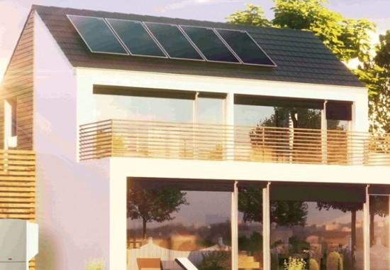 Panouri solare pentru apa calda WOLF