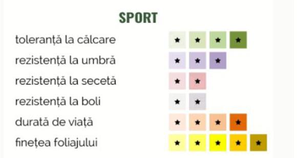 Schiță dimensiuni Gazon - Sport