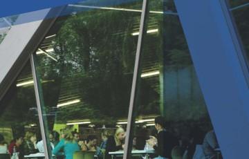 Sticlă cu protecţie solară și izolaţie termică SAINT GOBAIN