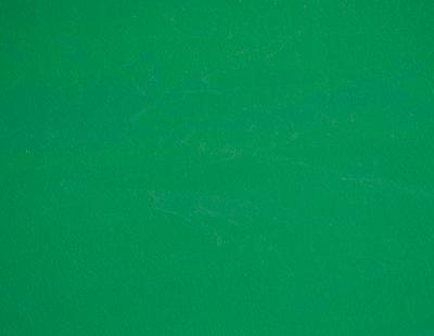 Pardoseala din cauciuc pentru sali de sport - MONDOFLEX II - MF10 MONDO - Poza 1