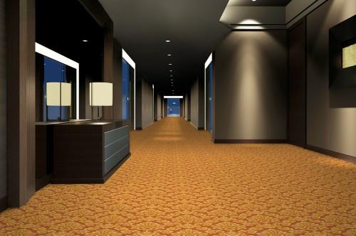 paletare si texturi mocheta personalizata corridor design 48 decor 38 tapibel poza 2. Black Bedroom Furniture Sets. Home Design Ideas