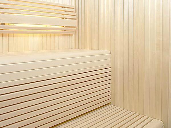 Camera pentru saune traditionale TYLO - Poza 4