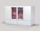 Centrale de cogenerare pe gaz natural sau biogaz WOLF