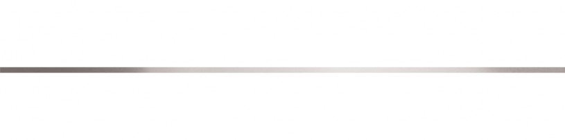 Piesa decor - Banda metalica mata 60x0.6 cm GALA - Poza 11