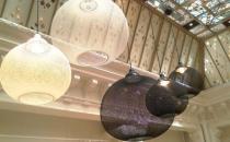 Lustre MOOI ofera o gama variata de lustre pentru interior. Corpurile de iluminat iesite din comun se muleaza perfect pe principiile artistice promovate de catre Moooi: inovatie, creativitate si stil.