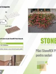 Placi StoneREX piatra Naturala pentru socluri