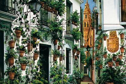 Strada cu cladiri vechi si plante ornamentale Faianta pictata pentru dormitor