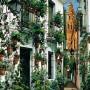 Strada cu cladiri vechi si plante ornamentale