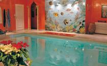 Faianta pictata pentru amenajarea piscinelor Cameleonia va propune o solutie decorativa unica, faianta pictata pentru a crea efecte spectaculoase pentru piscina interioara sau exterioara.
