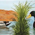 Rate pe lac - Decoruri artistice din faianta pictata pentru living ARTELUX