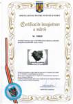 Certificat de inregistrare a marcii - Oficiul de Stat pentru Inventii si Marci / BIOSOLARIS  / BIOSOLARIS