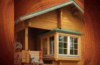 Tratamente pentru protectia lemnului si a constructiilor de lemn - BOCHEMIT