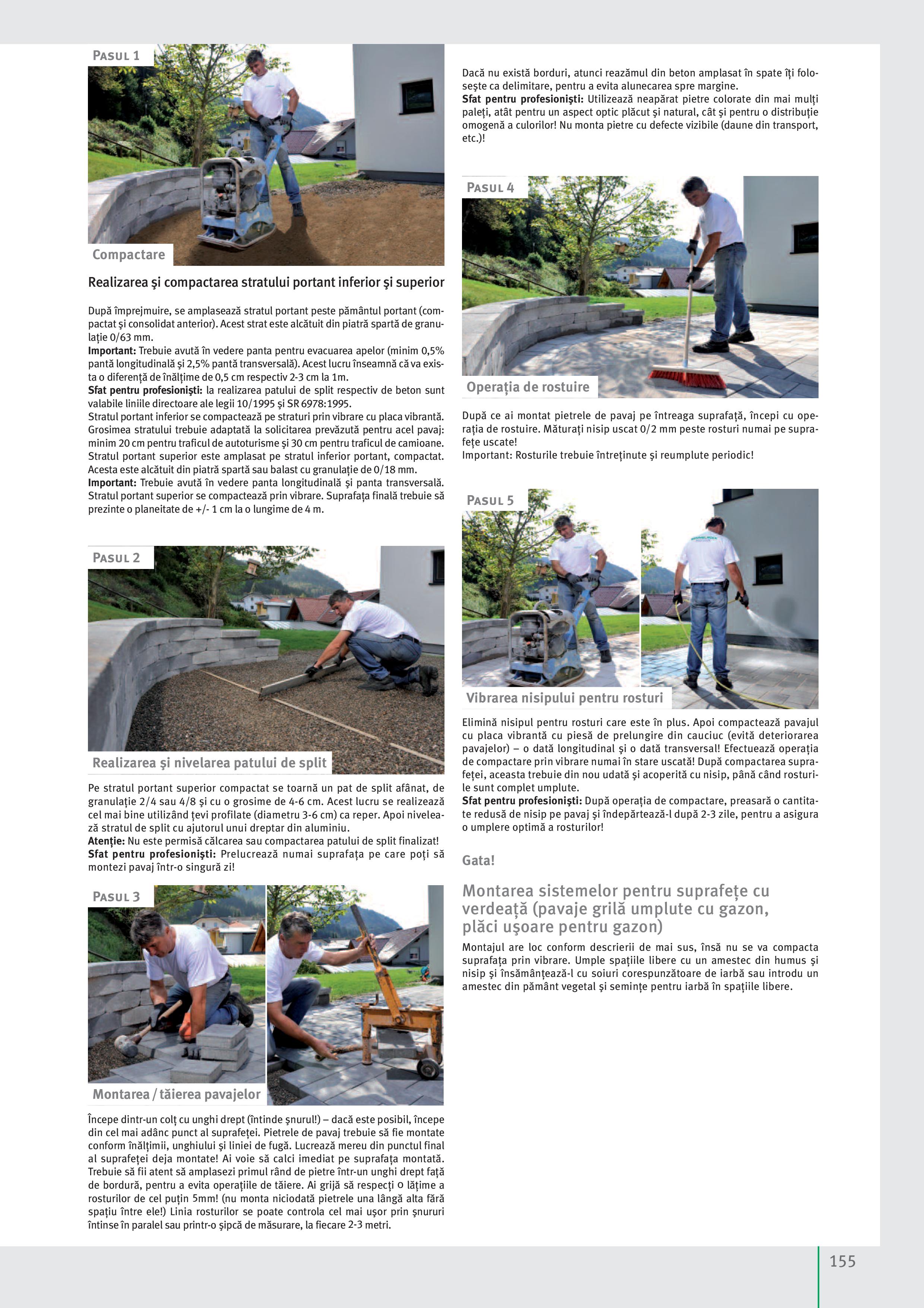 Pagina 157 - Idei pentru grădină 2019