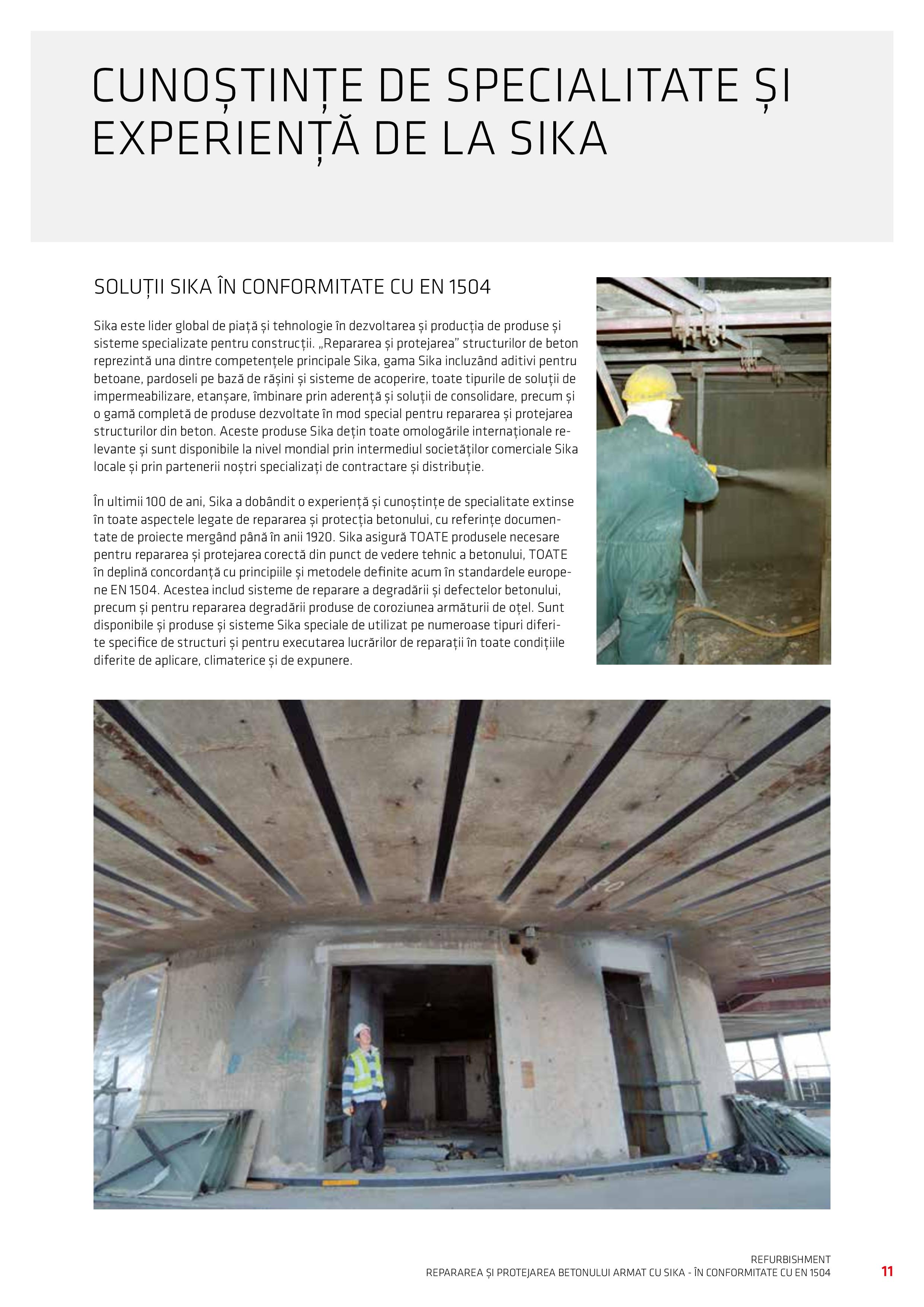 Pagina 13 - Repararea si Protejarea Betonului
