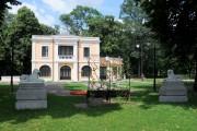 Romanescu 3.jpg