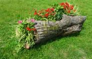 2271148-263191-original-flower-bed-in-a-wooden-log-of-formal-garden.jpg