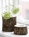 thumb_405_x_510_43849-tree-stump-vases-1-500x631.jpg