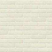 Caramida Rodruza Super White - Gama de culori caramida Nelissen