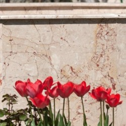 Marmura Rosalia Beige Polisata 60 x 30 x 2 cm - Marmura