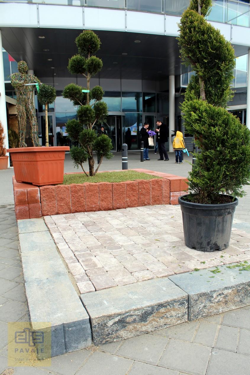 Palisade arbusti - Idei de amenajare a curtii si gradinii cu blocuri din beton