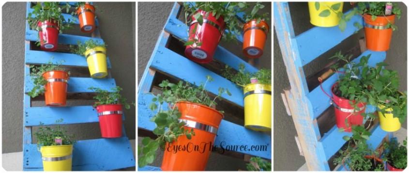 Un suport ingenios pentru ierburile aromatice - Un suport ingenios pentru ierburile aromatice