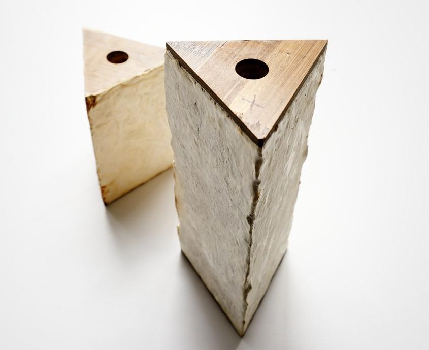 MycoTree - Structura care demonstrează utilitatea ciupercilor în construcții