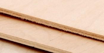 Placaj fag - Placaj lemn