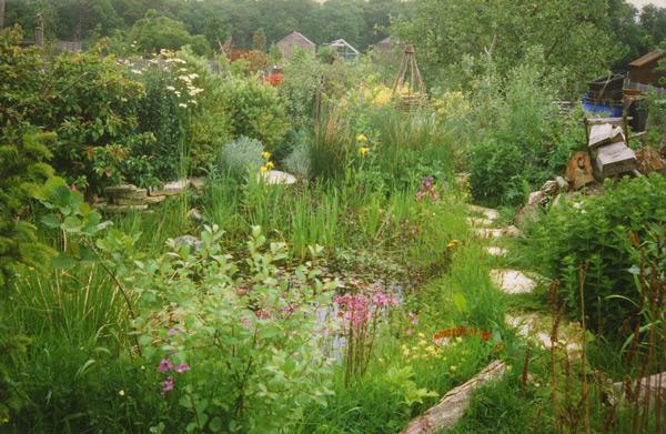 Tipologia de Grădina WILDLIFE – Amenajare peisagistică pentru susţinerea vieţii sălbatice - Tipologia de Grădina WILDLIFE