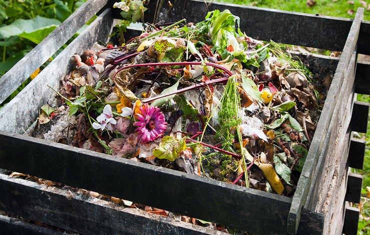 Compost - Sfaturi pentru îngrijirea grădinii pe vreme caniculară