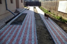 Pavele din beton - Piscot - Pavele din beton - Constructii Millenium
