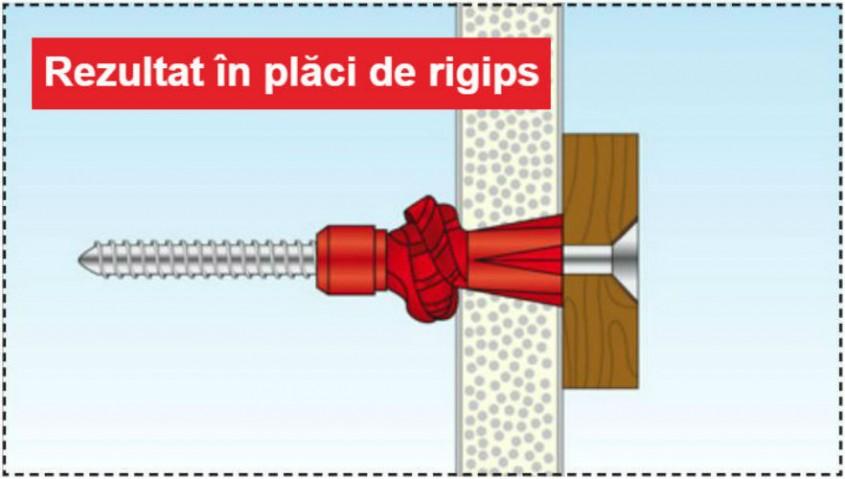 Rezultat in rigips - Structuri durabile cu diblurile Tox Tri