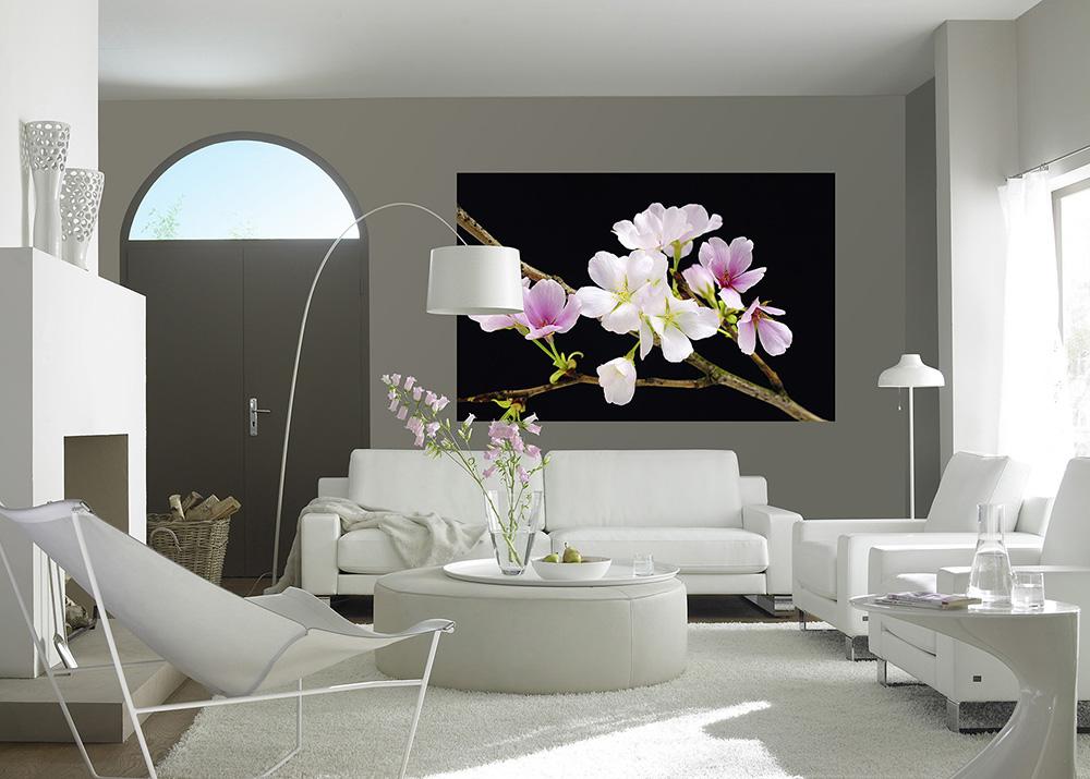 Fototapet floral, fond negru cu creanga de cires inflorita - Fototapet - TAPETCENTER