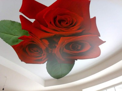 Tavan extensibil - model cu trandafiri rosii - Tavane extensibile