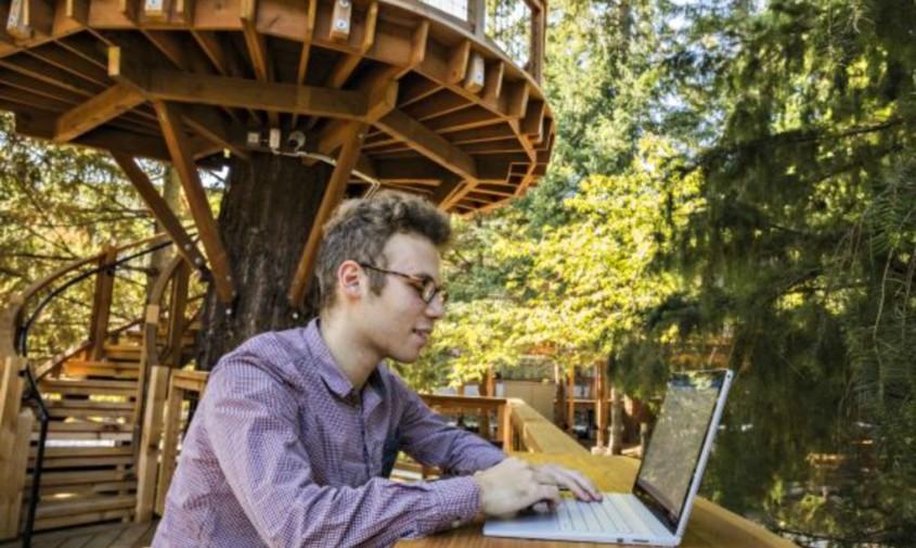 Microsoft introduce casele in copac unde angajatii se pot relaxa la aer proaspat - Microsoft introduce