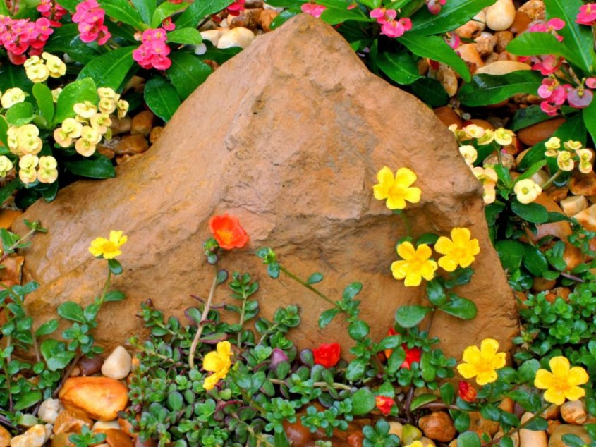 Rocarie flori si pietris - 3 elemente pentru un design unic in gradina - Rocărie flori