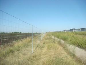 Farmerfence Light - plasa sudata zincata de la Frigerio - Plase zincate pentru garduri metalice