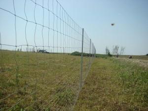 Galvafield - plasa innodata pentru gard - Plase zincate pentru garduri metalice