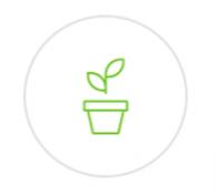 Plantele si lichenii nostri nu au nevoie de pamant - AERO PLANT